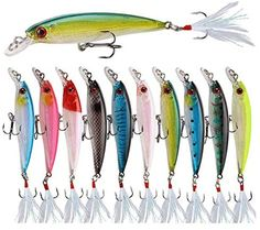Aneew Lot 10 Pack Fishing Lures Biat Minnow Feather Tail Laser Paint Bass Trout Kit Popper Crankbait Topwater Freshwater Saltwater