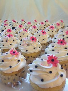 polka dot cupcakes.. But with no flowers