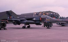 ImageShack - Best place for all of your image hosting and image sharing needs Air Force Aircraft, Ww2 Aircraft, Military Jets, Royal Air Force, Cold War, Image Sharing, More Photos, Jaguar, Fighter Jets