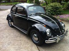 1963 VW Bug small turn signal on fender.