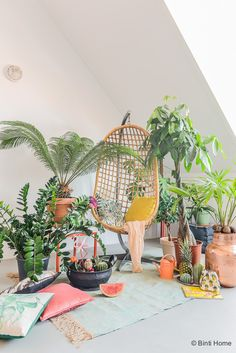 Urban Jungle Bloggers: Tropicool by @bintihomestudio