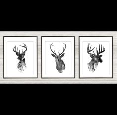 This listing is for three UNFRAMED prints (choose your size above). A 1/4 inch white border is included around the print for ease of framing.