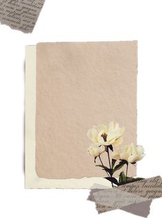 Collage Background, Flower Background Wallpaper, Flower Backgrounds, Paper Background, Textured Background, Aesthetic Template, Aesthetic Stickers, Instagram Frame Template, Powerpoint Background Design
