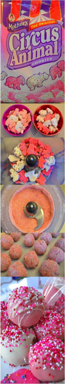 SHUT THE FRONT DOOR Circus Animal Cookie Truffles -- OMG circus animals are my favorite!!