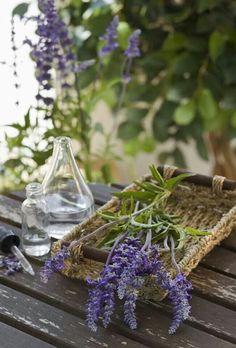 Love lavender it helps me sleep