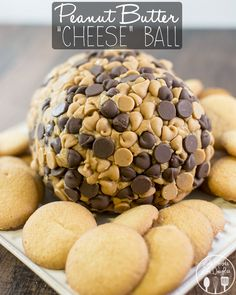"""Peanut Butter """"Cheese"""" Ball - a delicious dessert cheeseball, with smooth peanut butter, cream cheese, powdered sugar and covered in chocolate and peanut butter chips for a delicious dessert spread perfect on cookies, pretzels or graham crackers!"""