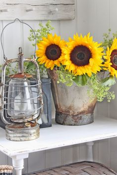 Galvanized container - fabulous sun flowers