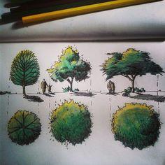 Graficacion