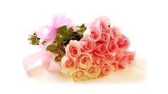#sendflowersinindia #flowersonlineindia      #onlineflowerdeliveryinpunjab #sendflowerstopunjab  #flowerstopunjab #floristsonlineinjalandhar    To buy flowers, please click on the below link :     http://www.indiacakesnflowers.com/product-category/roses/    Contact No : 9216850252    Website : http://www.indiacakesnflowers.com
