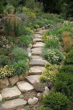 Love the stone walkway! See more backyard Landscaping Ideas here: http://goo.gl/r7S6f7
