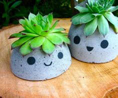 Cute Concrete Planter with instructions too. This should be in craftnig, but It's a great idea to hold succulents, hence in growing folder