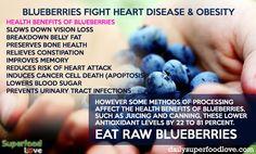 blueberries benefits - Bing Images