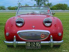 Austin Healy Bug-Eye Sprite
