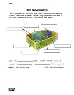 Plant and Animal Cell Worksheet #homeschoolscience