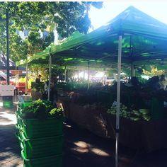 At kings cross market today using my reusable @fruitysacks