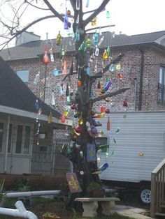 miraculous bottle tree in NOLA and at a FEMA trailer
