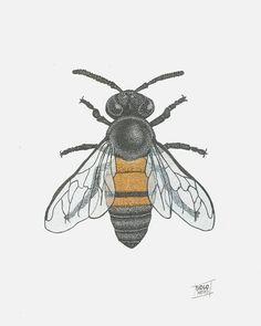 · Ilustração: Abelha · Bee  Dimensão: A4 / 210mm x 297mm Técnica: Pontilhismo / Tinta Nanquim Papel: Canson branco 224g/m² . Stippling Art, Design Reference, Creative Art, Tatoos, Insects, Illustration Art, Doodles, Drawings, Animals