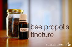 Bee propolis is a wonderful ingredient for your DIY body products, especially when you want to encourage healing. Unfortunately, raw bee propolis looks like clods of dirt, and as such is rather difficult to add to things as is. So, … Continue reading →