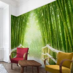 Bilderwelten non-woven wallpaper wide Decor, Home, Bamboo, Wallpaper, Sweet Home, Curtains, Green, Woven