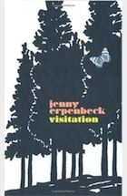 Visitation by Jenny Erpenbeck – review | Books | The Guardian