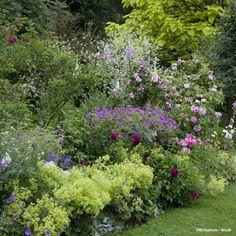 Collection de végétaux pour un jardin romantique