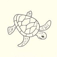 27 Best Sea Turtle Drawings Images Sea Turtles Sea Turtle Art