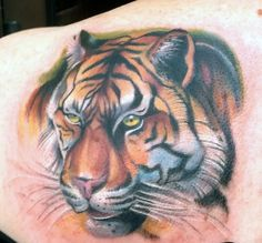 Gallery For > Tommy Helm Tattoo Nightmares