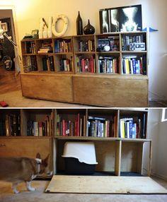 Hidden Bookshelf Litter Box | 27 Useful DIY Solutions For Hiding The LitterBox