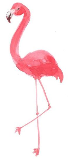 New! Fancy Standing Flamingo Print