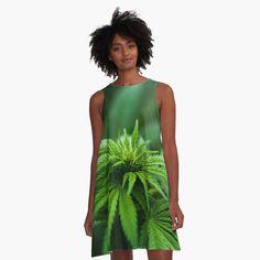Marijuana Plants A-L