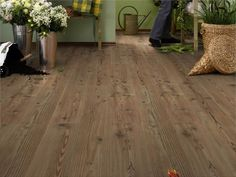 Buy flooring online and save money with Floormaker. Huge range of cheap laminate, vinyl, and real wood flooring available. Real Wood Floors, Pine Floors, Hardwood Floors, Oak Laminate Flooring, Floor Design, Cool Rooms, Rustic Design, Shag Rug, Greenery