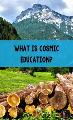 What is Cosmic Education? A really simple definition of it would be an approach to education that helps students grow an awareness that everything in the universe is connected and interdependent so that they see themselves as being a connected peaceful person working for a peaceful world. In the 6-12 class, cosmic education is the centre of the spider web from which everything else connects to. What Is Montessori, Montessori Preschool, Montessori Elementary, Montessori Education, Maria Montessori, Reading Words, Teacher Memes, Teaching French, Great Stories