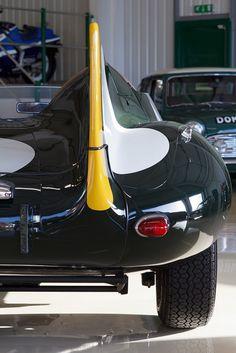 #Jaguar #D-Type #ClassicCar #QuirkyRides