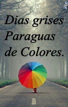 para los días grises paraguas de colores