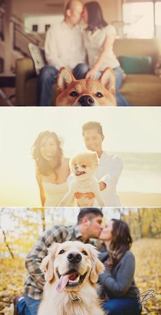As pet owners we know how much you want to share your special moments with your furry friends.  Although some of you might not be able to include your pets on the actual wedding ceremony, you can certainly invite them to your engagement shoot! Tips for taking pictures with your dogs? Other than bringing treats …