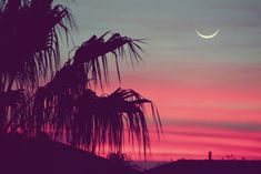 Pink sunset, moon