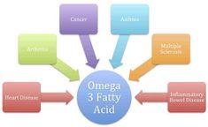 How useful omega Acid Simply Recipes, Simply Food, Animal Nutrition, Omega 3, Asthma, Heart Disease, Arthritis, Fitness Tips, Infographic