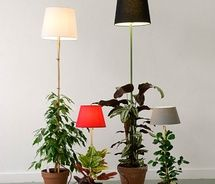 cool planter