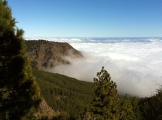 Sea of Clouds, on the way to Mt. Teide