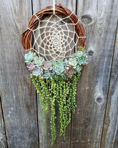 A gardeners' dream catcher ✨ What kinds of dreams would it catch for you?   Photo: @jenssuccs/Instagram