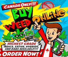 buyweedonline.ca