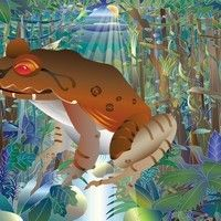 Nature Maestro Rainforest Night - Smokey Jungle Frog by dhysom on SoundCloud