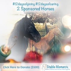Looking for 2 individuals to #sponsor the #horses in our program! These are the heroes of Stable Moments- the heroes who offer to our participants understanding, hope and love. Will you help the program grow and offer support to more #foster and #adopted children in our #community? They need us to #giveback this year!   Visit our webpage to donate: www.stablemoments.com/donate/12-days-giving/
