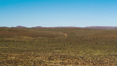A static daytime timelapse of a safari vehicle driving through wide open landscape scene with green shrubs against a blue sky on a gravel road. Travel And Tourism, Stock Footage, Shrubs, 4x4, Safari, Vehicle, Track, Scene, African