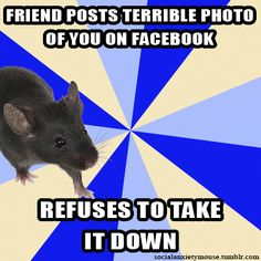 Tumblr and the communities that develop there are very interesting to me. Social Anxiety Mouse is an example of people getting together to produce Internet memes that seem to make fun of SAD. However, social media, in my opinion, has a way of uniting people and, though this, alleviating the loneliness that results from being too afraid of social interactions.
