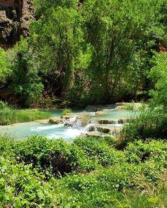 #Havasupai19 #HavasupaiFalls #VegasLocal #travel #travelblogger #getoutside #hike #adventure #backpacking #girlswhohike #girlswhobackpack #AZCulture #SouthwestGallery #Arizona #GrandCanyon #roadtrip #nature #BeaverFalls #HavasuFalls #MooneyFalls #Havasupai #Supai #GetOutdoors #backpack #camping #MyInspirationalPlace #waterfalls #chasingwaterfalls Havasupai Falls, Beaver Falls, Backpack Camping, Get Outdoors, Get Outside, Waterfalls, Backpacking, Grand Canyon, Vegas
