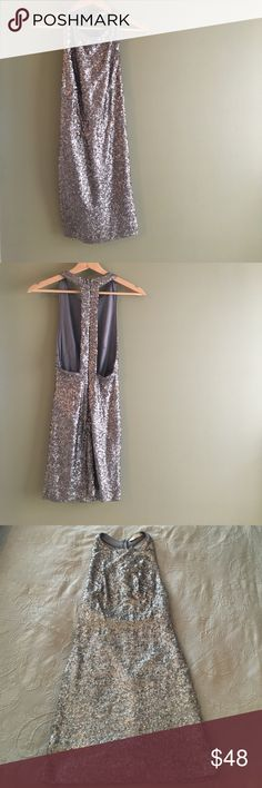"""Lush- Silver Sequin 'T' Back dress -CONDITION: LIKE NEW! Worn once for NYE!  -This dress is absolutely beautiful, super comfy and perfect for a date night or New Years Eve!  -100% Polyester -Dry Clean only -Hidden back zipper closure with hook & eye  -Length measures approx. 32"""" from shoulder seam to hem  -Chest measures approx. 12"""" across  -Don't worry-- It's Fully lined!  -Questions and REASONABLE offers are welcome  -Pet friendly home but smoke free -Bundle to save 💕 Lush Dresses"""