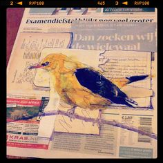12th June - Dudeljo klinkt zijn lied (Oriole) - bic, charcoal, yellow ink and collage on newspaper