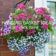 Hanging Baskets Flowers Planters Potted Container