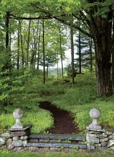 I've always wanted to create a nature trail labyrinth in the woods on